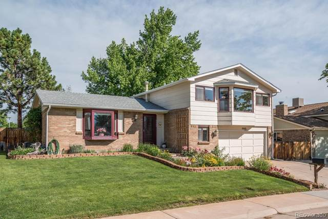 6449 S Hoyt Court, Littleton, CO 80123 (MLS #9165181) :: 8z Real Estate