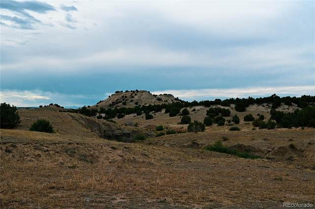 Lot 22 Mallory, Pueblo, CO 81004 (MLS #9166811) :: Keller Williams Realty