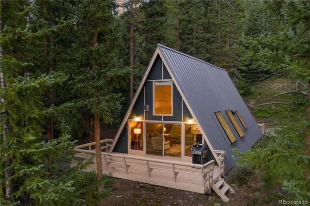 733 Range Road, Breckenridge, CO 80424 (MLS #9167524) :: 8z Real Estate