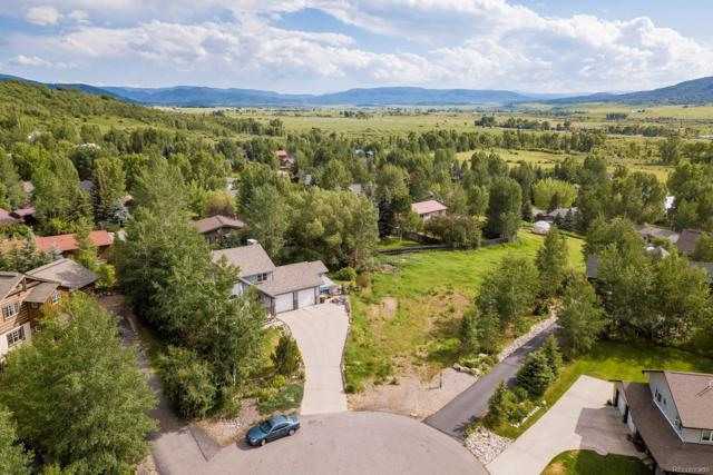 1647 Red Hawk Court, Steamboat Springs, CO 80487 (#9168523) :: My Home Team