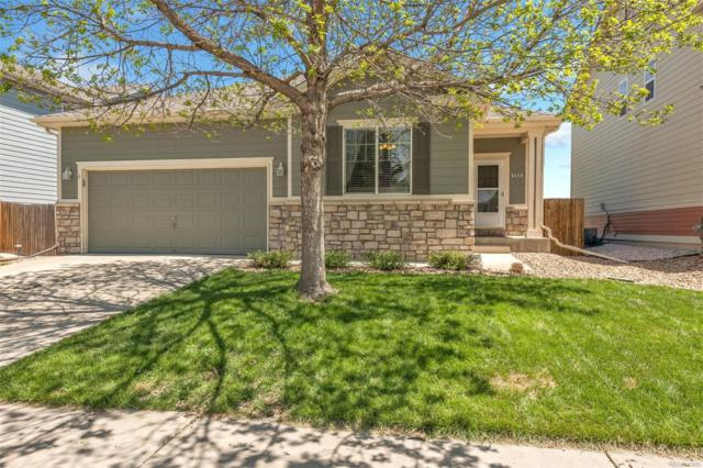 5115 Mt Buchanan Avenue, Frederick, CO 80504 (MLS #9168589) :: 8z Real Estate