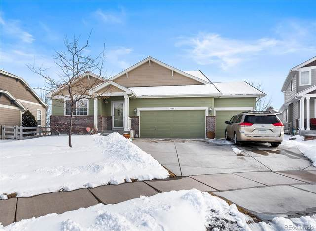 3020 Hackney Lane, Fort Collins, CO 80525 (#9168951) :: The Gilbert Group