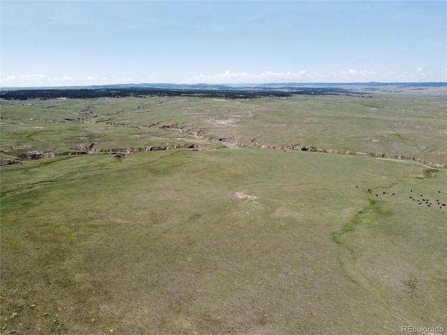00003 County Road 77, Calhan, CO 80808 (#9172850) :: The DeGrood Team