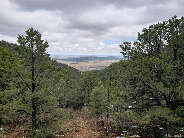Lot 23 Big Spruce Heights, Colorado Springs, CO 80926 (#9173238) :: James Crocker Team