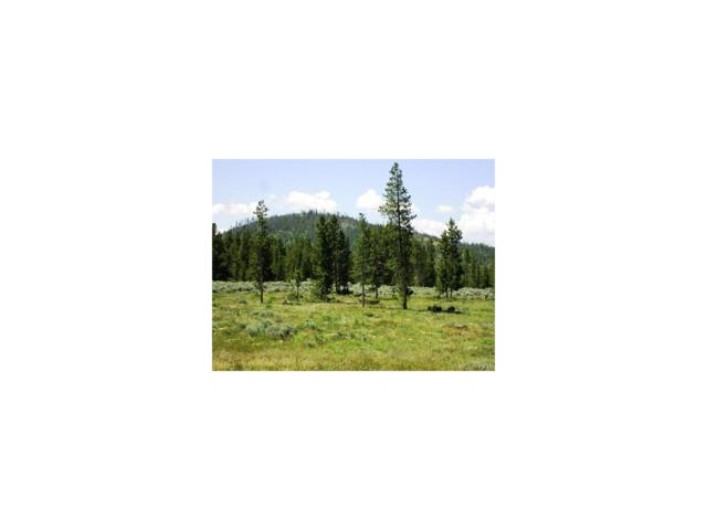 147 Vista Drive, Granby, CO 80446 (MLS #9173291) :: 8z Real Estate