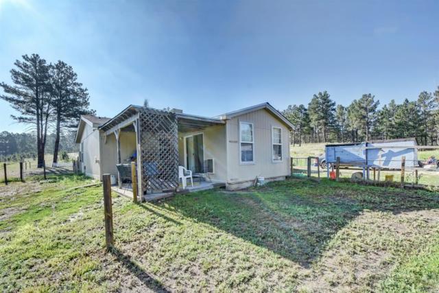 40571 Topaz Drive, Deer Trail, CO 80105 (#9176137) :: Bring Home Denver
