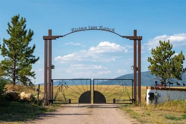 30395 Highway 131, Steamboat Springs, CO 80487 (#9178250) :: Mile High Luxury Real Estate