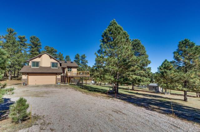 27758 Forest Ridge Drive, Kiowa, CO 80117 (#9179767) :: The Griffith Home Team