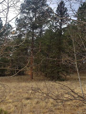 2927 Pathfinder Road, Florissant, CO 80816 (#9183364) :: The Brokerage Group