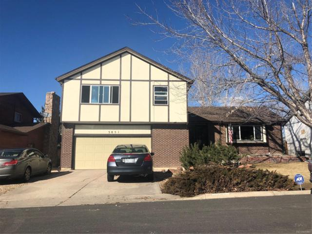 3851 W 97th Avenue, Westminster, CO 80031 (#9183852) :: James Crocker Team