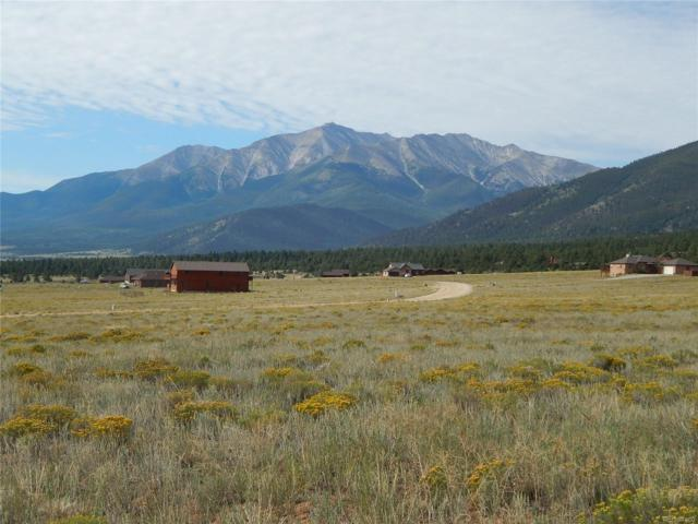 30575 Elk Meadow, Buena Vista, CO 81211 (MLS #9186477) :: 8z Real Estate