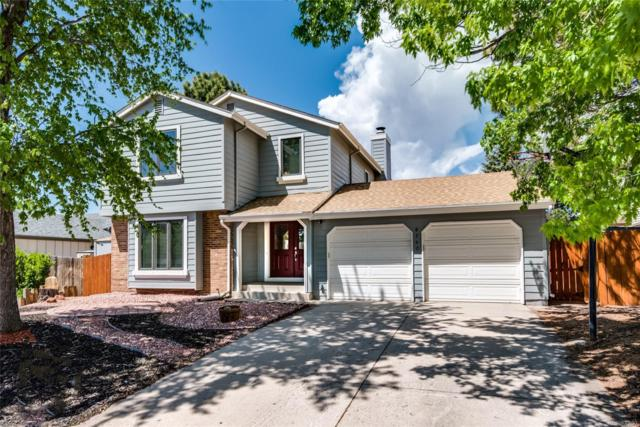 8240 Timothy Court, Colorado Springs, CO 80920 (#9186974) :: The DeGrood Team