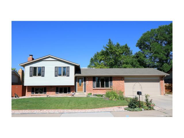 6243 S Marshall Court, Littleton, CO 80123 (MLS #9190235) :: 8z Real Estate