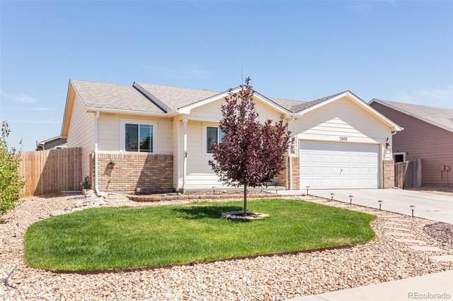 2908 Apple Avenue, Greeley, CO 80631 (MLS #9191872) :: 8z Real Estate