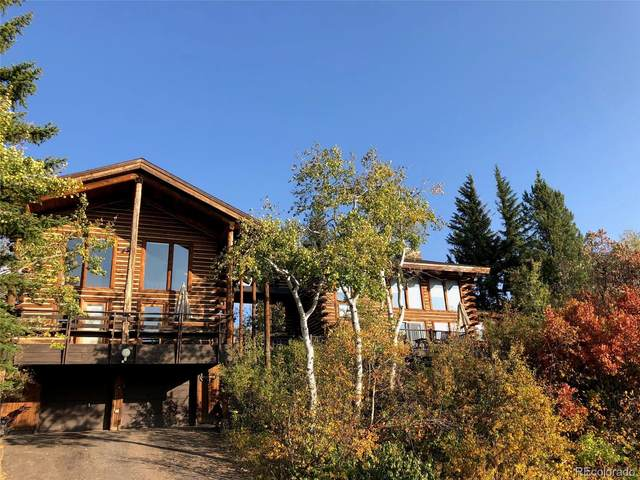 1527 Natches Road, Steamboat Springs, CO 80487 (#9192209) :: Real Estate Professionals