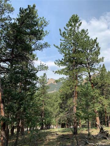 0 Stallion Drive, Pine, CO 80470 (MLS #9196881) :: Bliss Realty Group