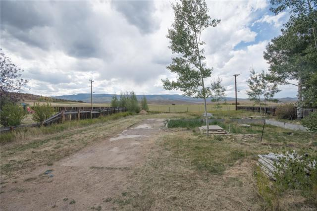 510 Terhune Avenue, Yampa, CO 80483 (#9199910) :: Bring Home Denver with Keller Williams Downtown Realty LLC