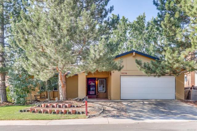 9236 W 91st Place, Westminster, CO 80021 (#9203832) :: The Galo Garrido Group