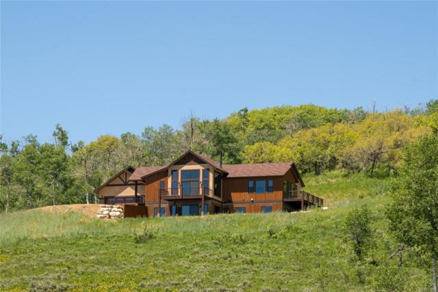 55810 Olive Street, Clark, CO 80428 (MLS #9205540) :: 8z Real Estate