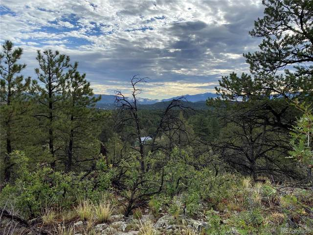 1039 35th Trail, Texas Creek, CO 81223 (MLS #9207302) :: Bliss Realty Group