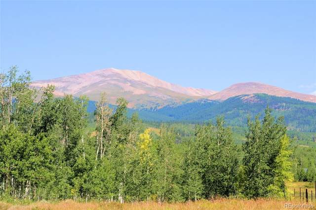 174 Canthook Lane, Fairplay, CO 80440 (#9207306) :: Symbio Denver
