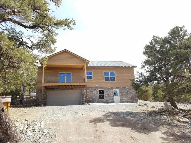 248 Big Bear Road, Mosca, CO 81146 (MLS #9207702) :: 8z Real Estate
