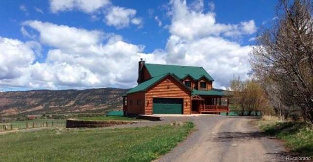 13612 59 Road, Collbran, CO 81624 (#9207798) :: The Healey Group