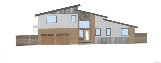 133 Raven Way, Buena Vista, CO 81211 (#9210529) :: Wisdom Real Estate
