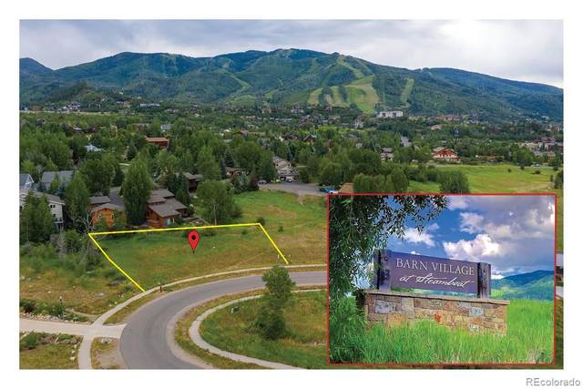 1150 Angels View Way, Steamboat Springs, CO 80487 (#9213281) :: The DeGrood Team