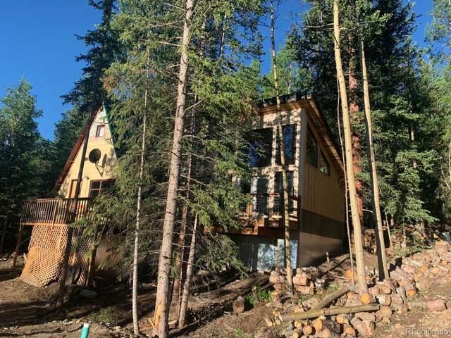 236 Cheyenne Road, Alma, CO 80420 (MLS #9213301) :: Bliss Realty Group