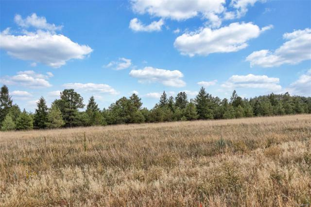 Lot 10 Forest View Road, Monument, CO 80132 (#9214001) :: The HomeSmiths Team - Keller Williams