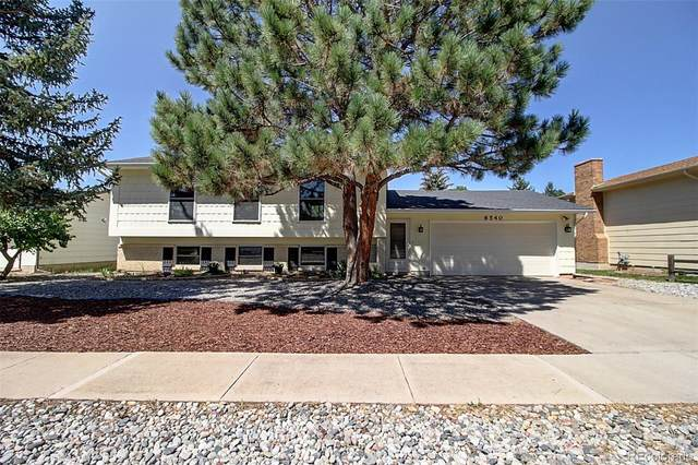 6540 Turret Drive, Colorado Springs, CO 80918 (#9214486) :: The DeGrood Team