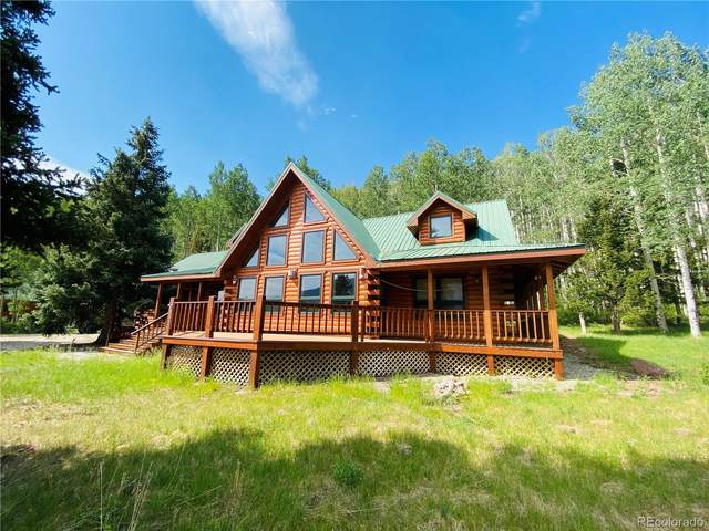 53 N Bear Paw Court, La Jara, CO 81140 (#9216458) :: Re/Max Structure