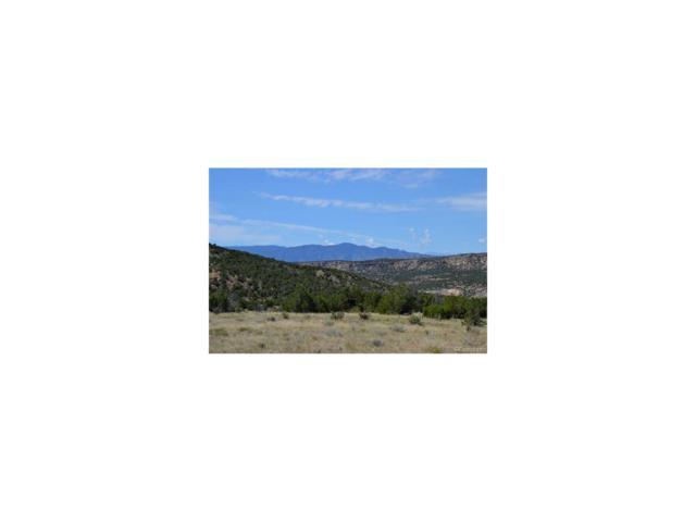 00 Garden Park Road, Canon City, CO 81212 (#9227525) :: Hometrackr Denver