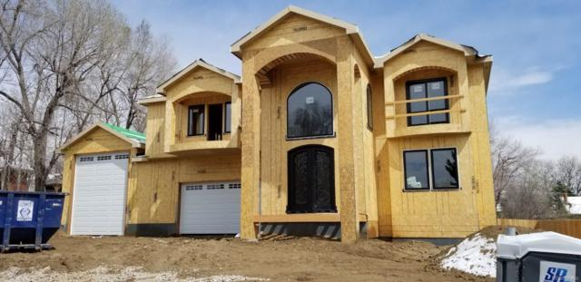 8380 S Ammons Street, Littleton, CO 80128 (#9228442) :: Compass Colorado Realty