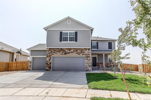 2380 Echo Park Drive, Castle Rock, CO 80104 (MLS #9228915) :: 8z Real Estate