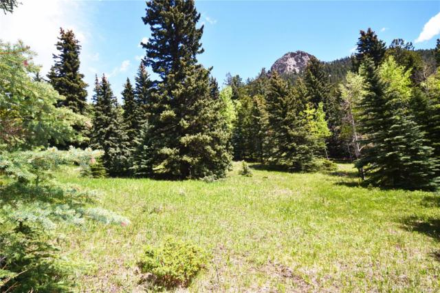 14 Witter Gulch Road, Evergreen, CO 80439 (#9230608) :: James Crocker Team