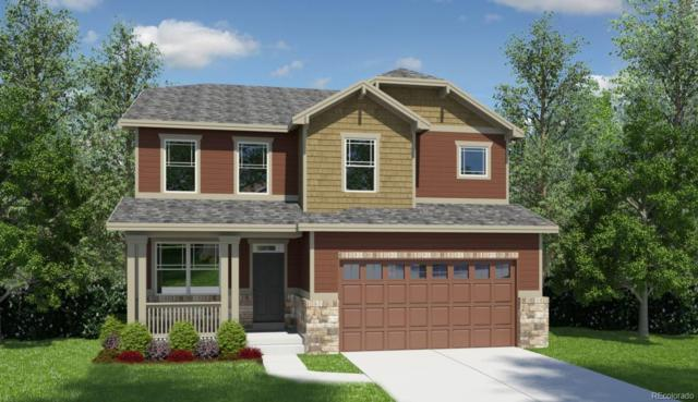 1339 Sidewinder Circle, Castle Rock, CO 80108 (#9234078) :: The Dixon Group