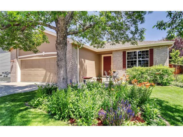 2664 S Holman Street, Lakewood, CO 80228 (#9234124) :: The Peak Properties Group
