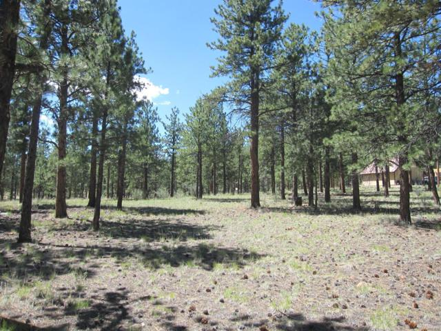 Burt Gulch Road, Buena Vista, CO 81211 (MLS #9234382) :: 8z Real Estate