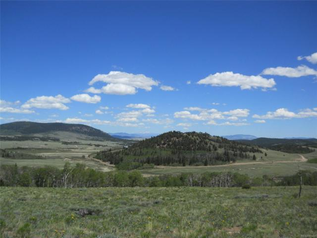 Meadow Drive, Fairplay, CO 80440 (MLS #9234591) :: 8z Real Estate
