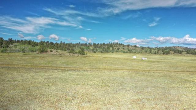 289 Cochiti Road, Hartsel, CO 80449 (#9235008) :: Compass Colorado Realty