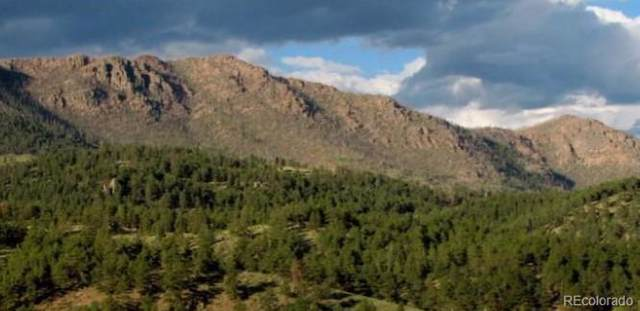 N Fork Road, Grant, CO 80448 (#9236725) :: Colorado Home Finder Realty