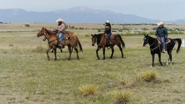 18790 Good Life View, Calhan, CO 80808 (#9241459) :: Compass Colorado Realty
