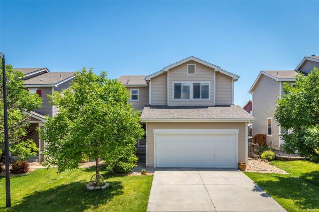 9621 Marmot Ridge Circle, Littleton, CO 80125 (#9243051) :: Bring Home Denver