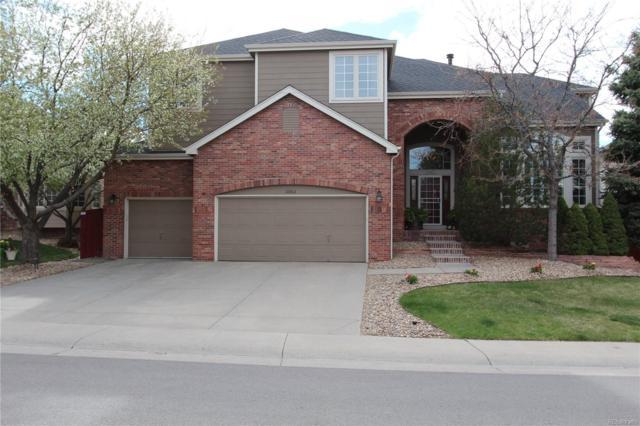 10863 Bobcat Terrace, Littleton, CO 80124 (#9247805) :: Wisdom Real Estate