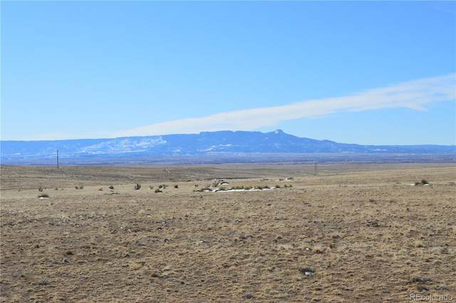 County Road 52, Hoehne, CO 81046 (#9251666) :: The Healey Group