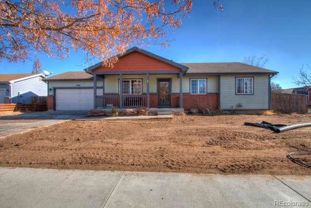 2048 Balsam Avenue, Greeley, CO 80631 (#9253465) :: The DeGrood Team