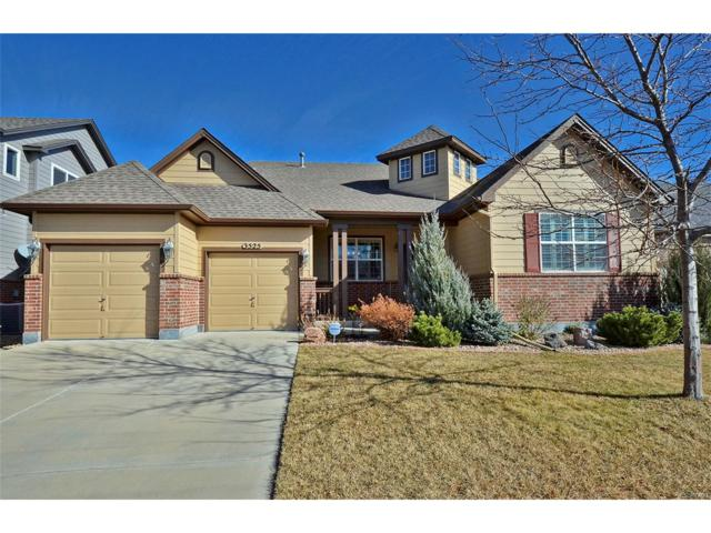3525 Softwind Point, Castle Rock, CO 80108 (#9255705) :: Colorado Team Real Estate