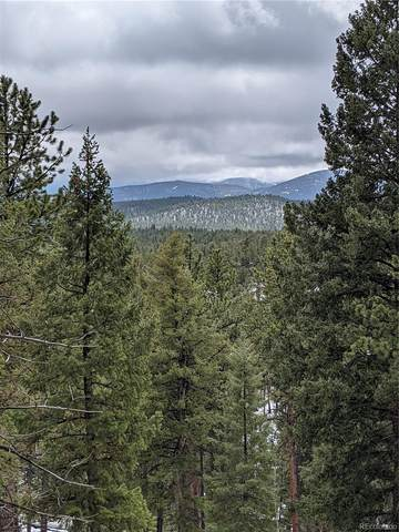 155 County Road B, Pine, CO 80470 (#9258151) :: The Colorado Foothills Team | Berkshire Hathaway Elevated Living Real Estate